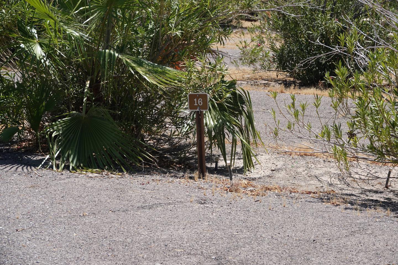 CB Campsite located in a desert setting 1603Callville Bay Campground Site 16