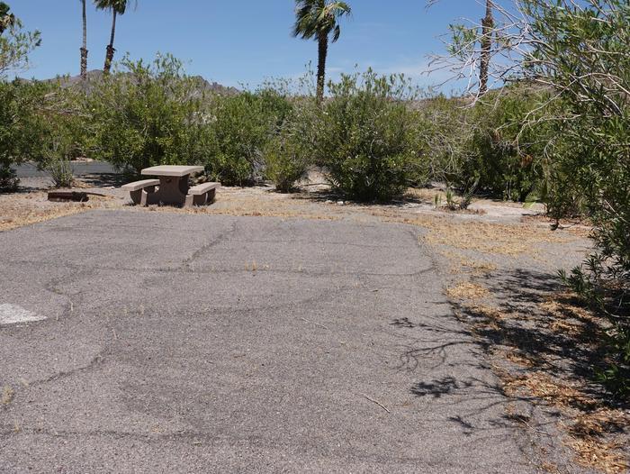 CB Campsite located in a desert setting 1701Callville Bay Campground Site 17
