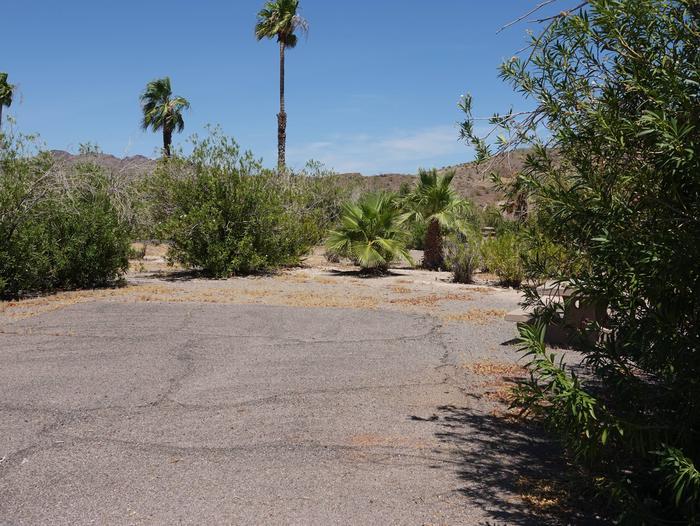 CB Campsite located in a desert setting 1901Callville Bay Campground Site 19