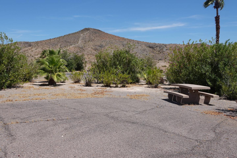 CB Campsite located in a desert setting 1902Callville Bay Campground Site 19