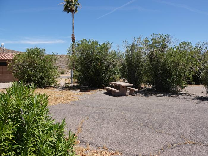 Campsite located in a desert settingCallville Bay Campground Site 22