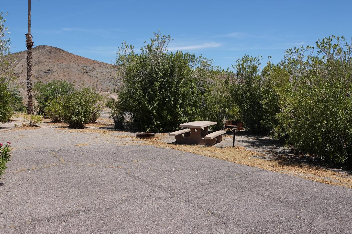 Campsite located in a desert setting2Callville Bay Campground Site 24