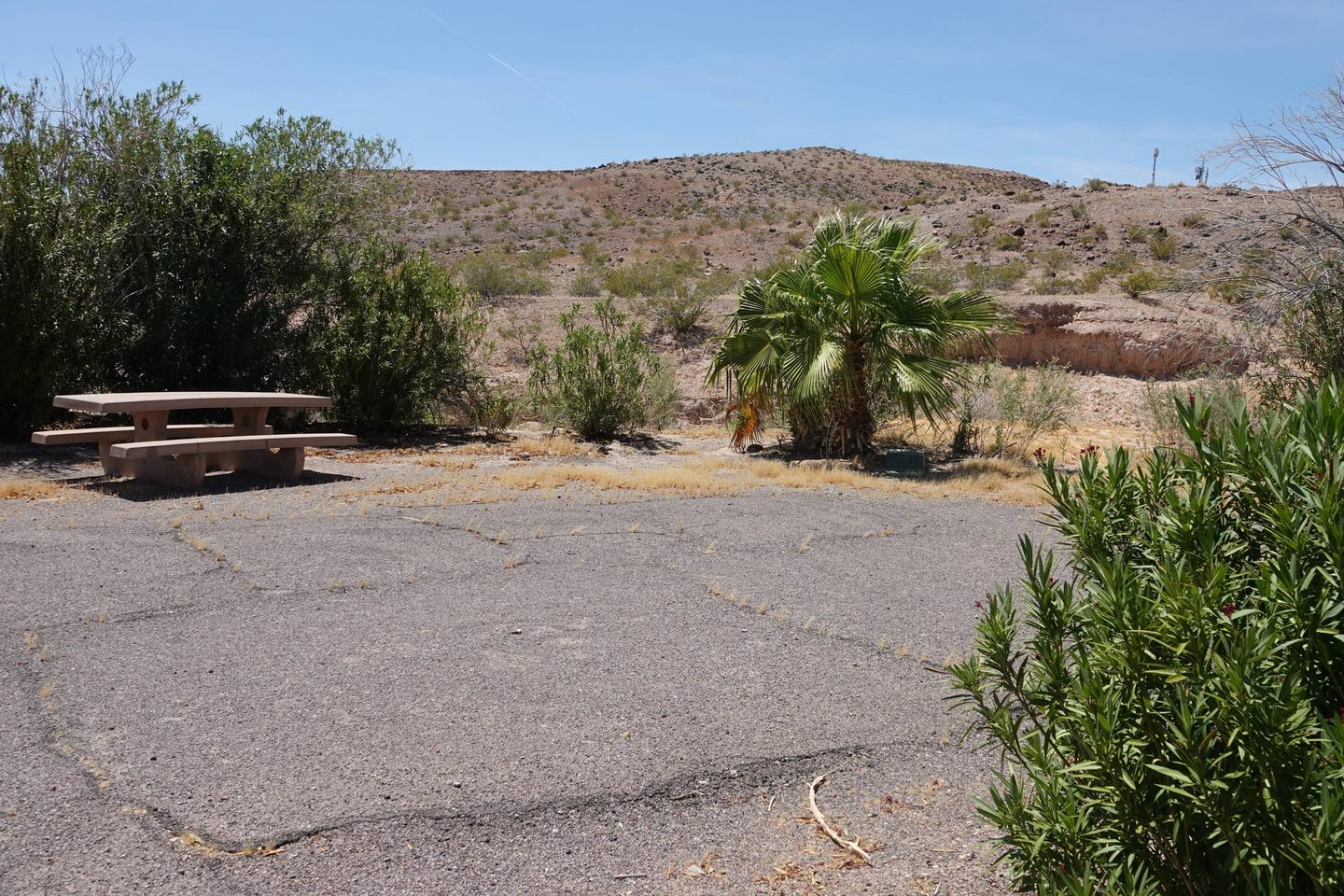 Campsite located in a desert setting1Callville Bay Site 25