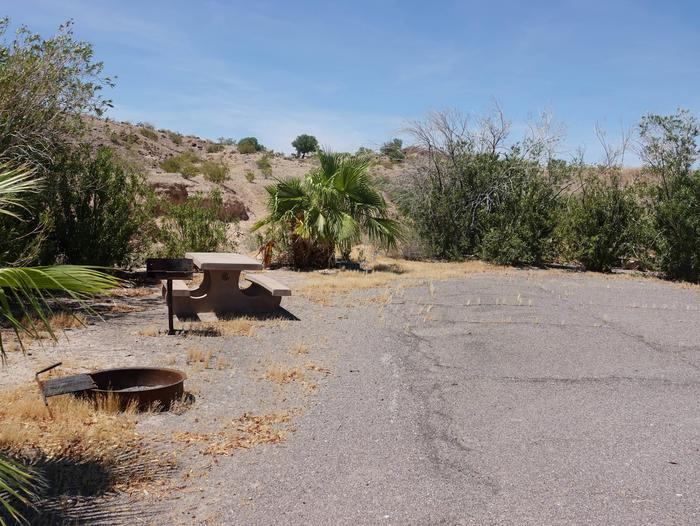 Campsite located in a desert settingCallville Bay Site 25