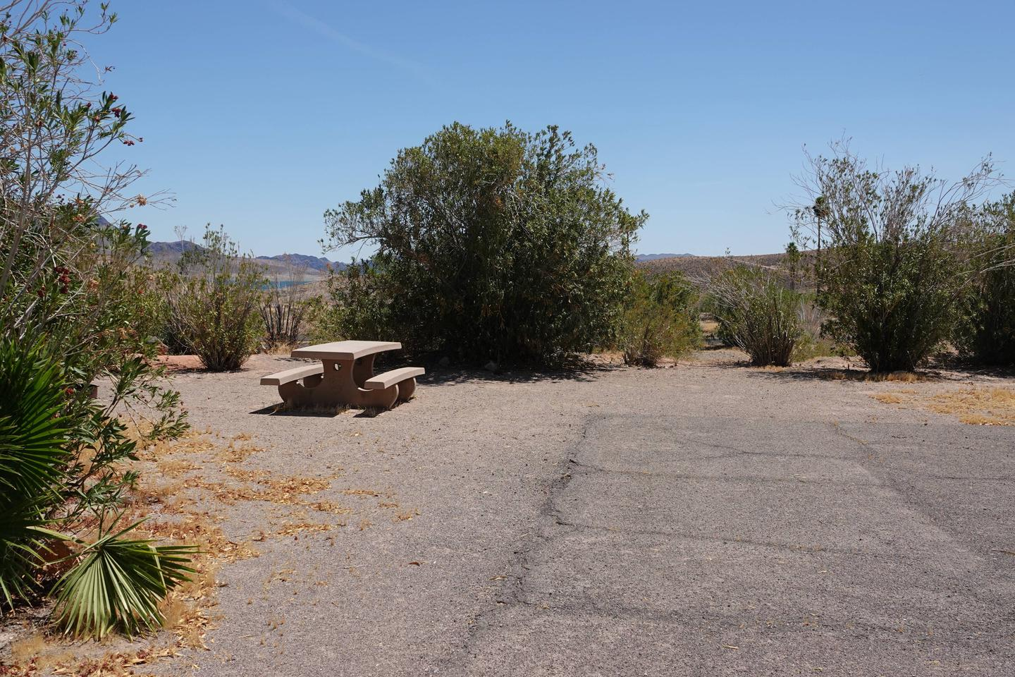 Campsite located in a desert setting2Callville Bay Campground Site 30