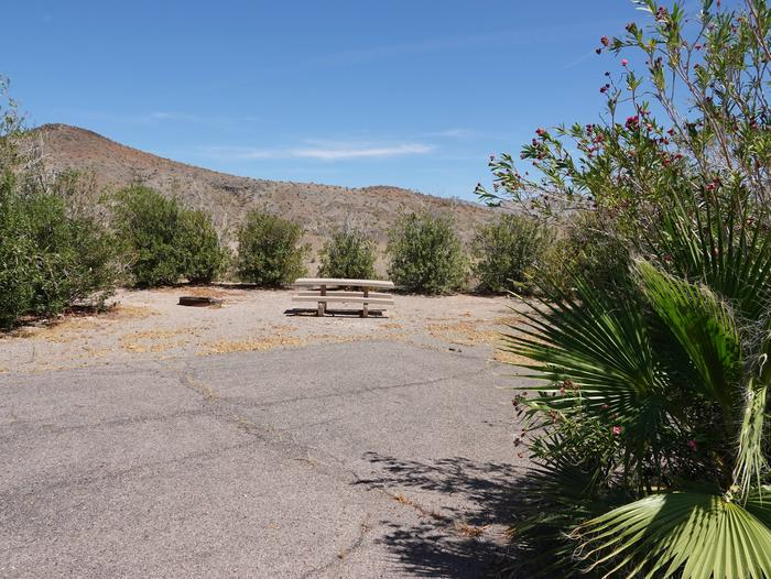Campsite located in a desert settingCallville Bay Campground Site 33