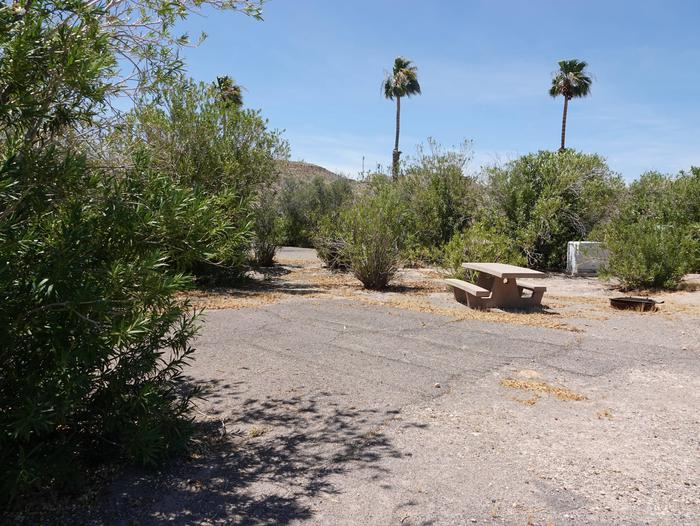 Campsite located in a desert settingCallville Bay Campground Site 34