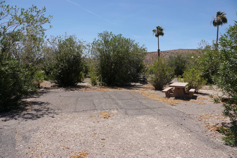 Campsite located in a desert setting1Callville Bay Campground Site 34
