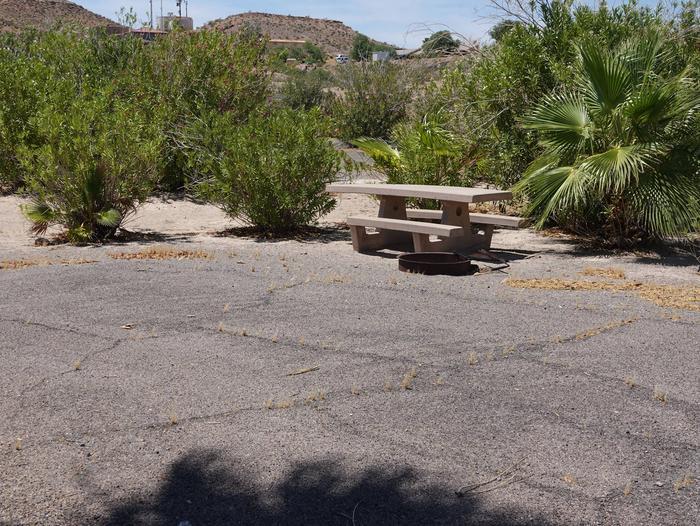 Campsite located in a desert settingCallville Bay Campground Site 37