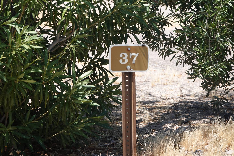 Campsite located in a desert setting2Callville Bay Campground Site 37
