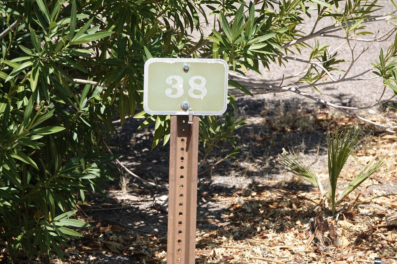 Campsite located in a desert setting2Callville Bay Campground Site 38