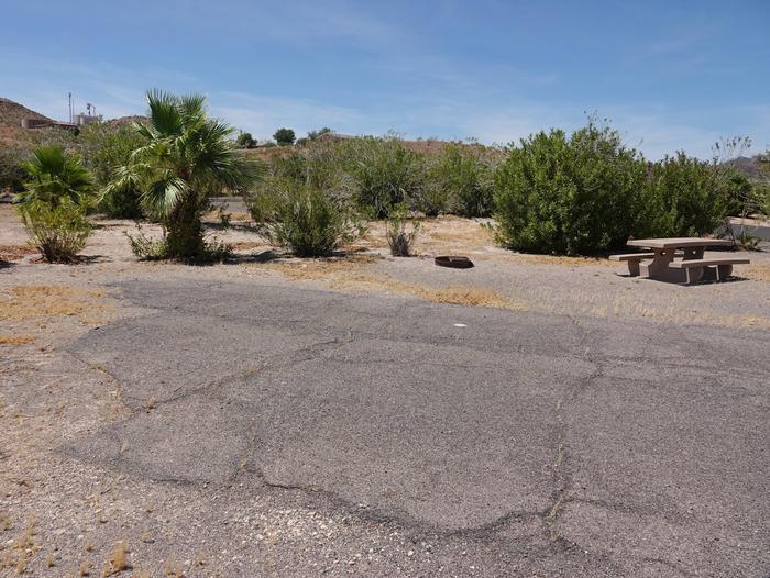 Campsite located in a desert settingCallville Bay Campground Site 39