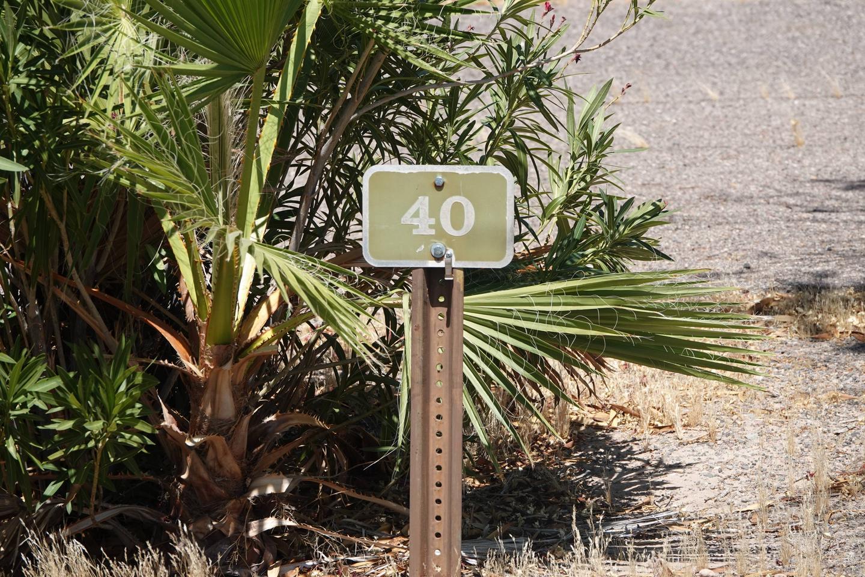 Campsite located in a desert setting2Callville Bay Campground Site 40