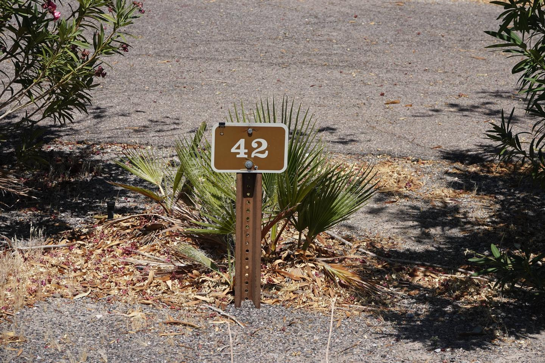 CB 4203Callville Bay Campground Site 42