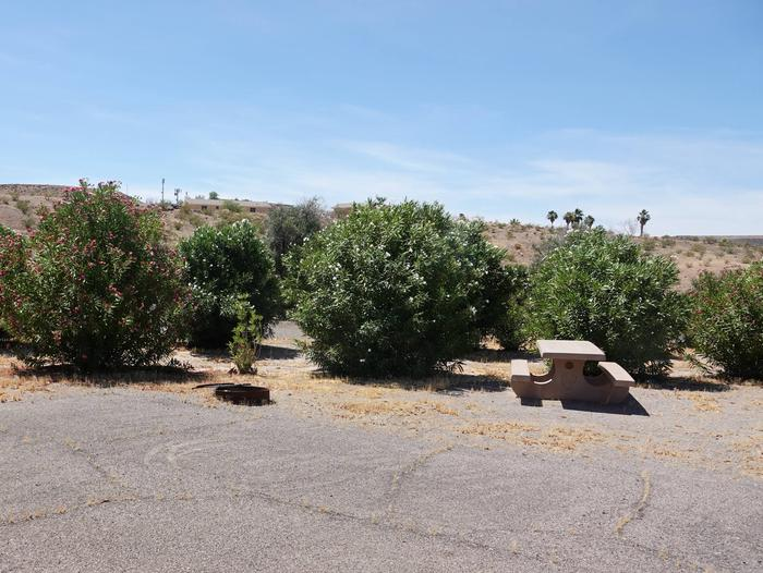 Campsite located in a desert settingCallville Bay Campground Site 51