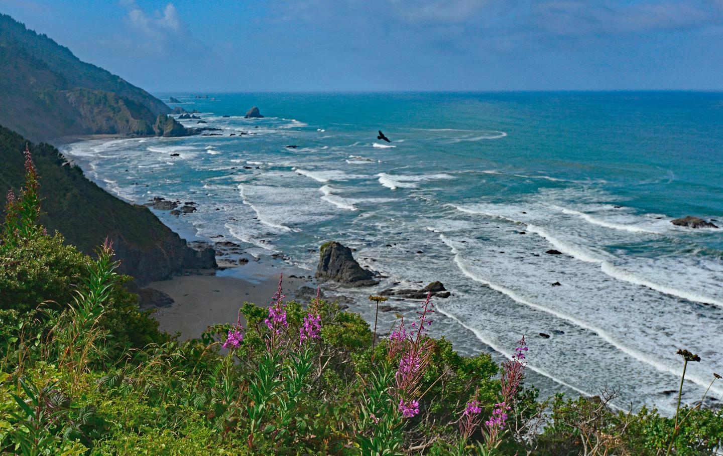 Enderts BeachThe park protects forty miles of rugged coastline and marine protected areas..
