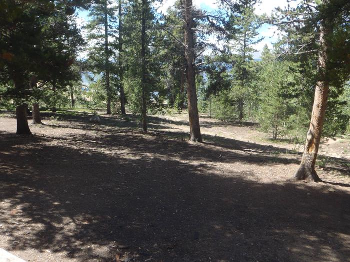 Baby Doe Campground, Site 13 clearing
