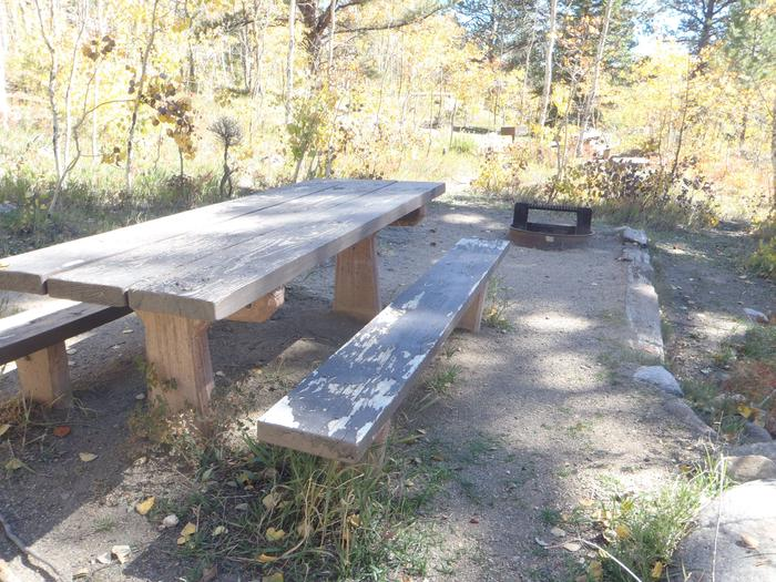 Lakeview Campground, site D2 picnic table and fire ring