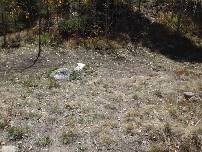 Lakeview Campground, site D2 clearing