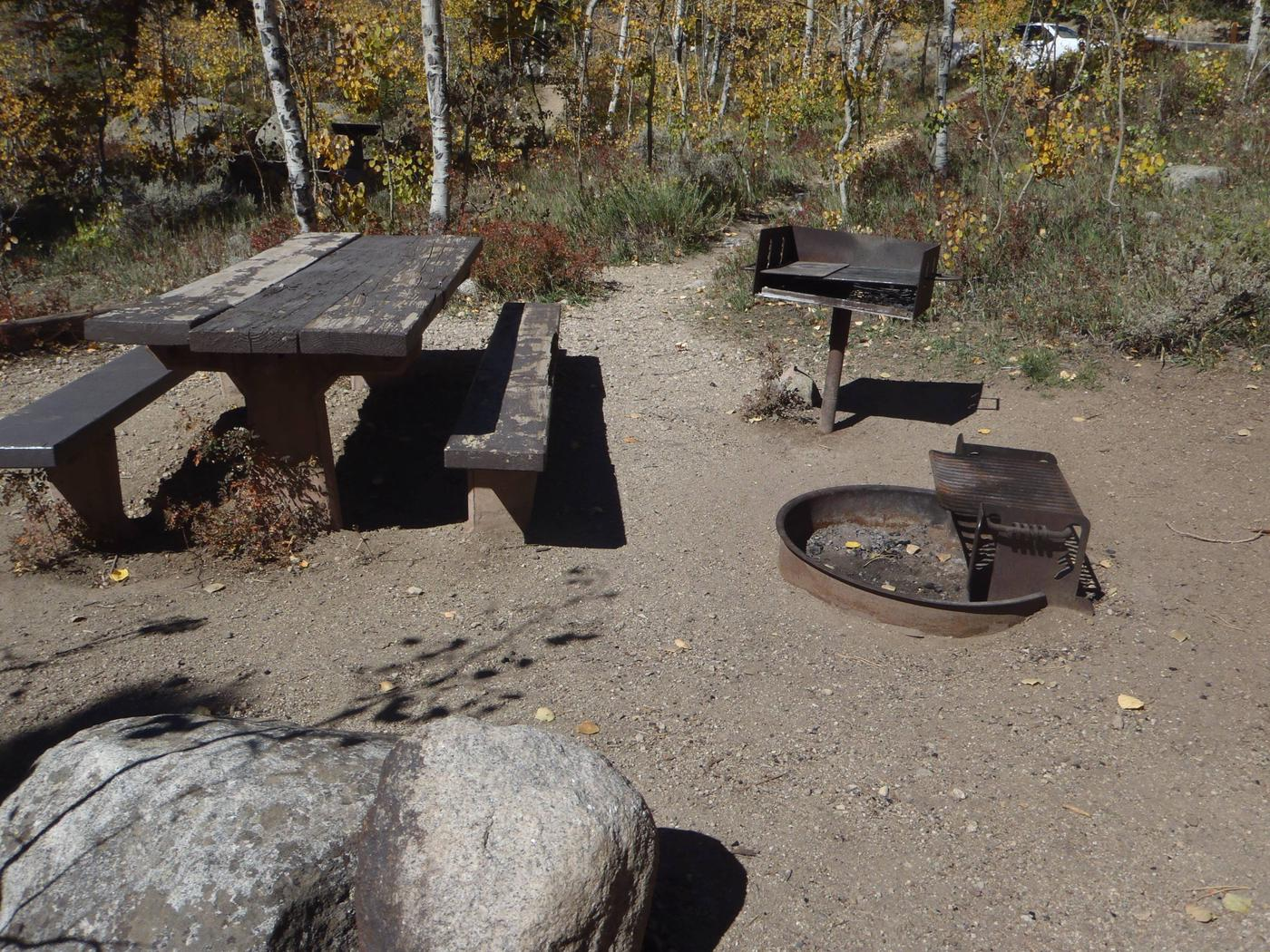 Lakeview Campground, site D4 picnic table and fire ring
