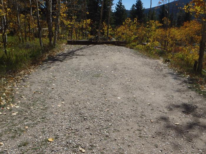 Lakeview Campground, site D4 parking