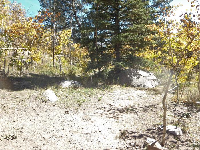 Lakeview Campground, site D4 clearing 2