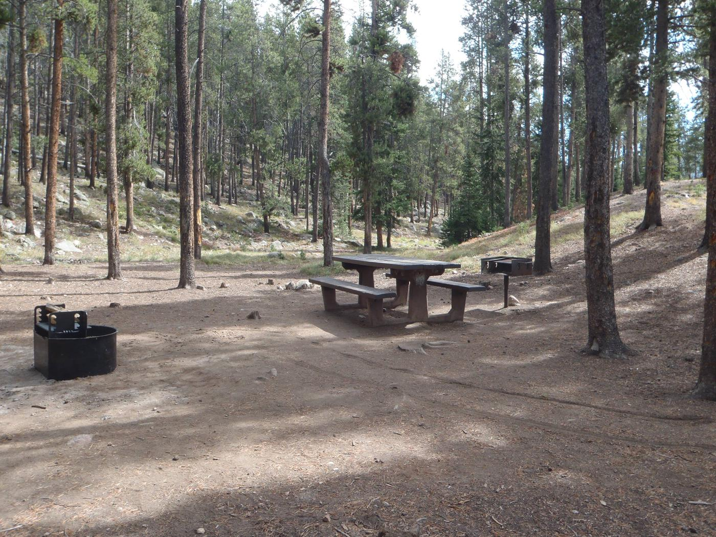May Queen Campground, site 14 picnic table and fire ring