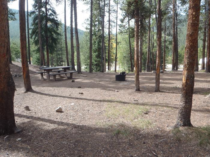 May Queen Campground, site 14 picnic table and fire ring 2