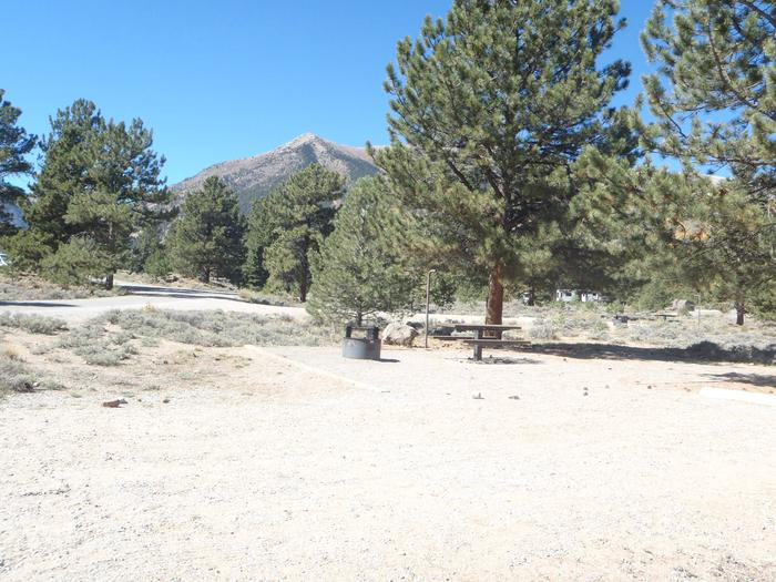 White Star Campground, site 13 view