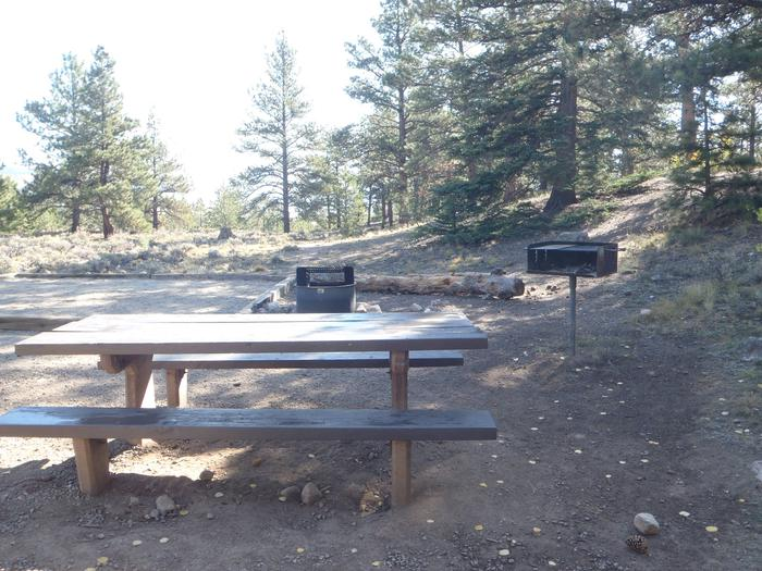 White Star Campground, site 53 picnic table and fire ring