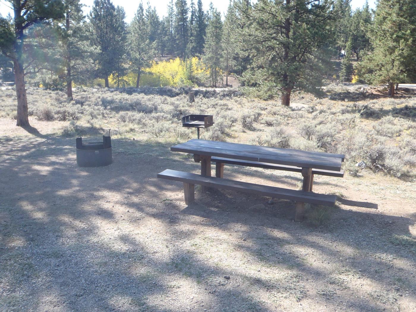 White Star Campground, site 55 picnic table and fire ring
