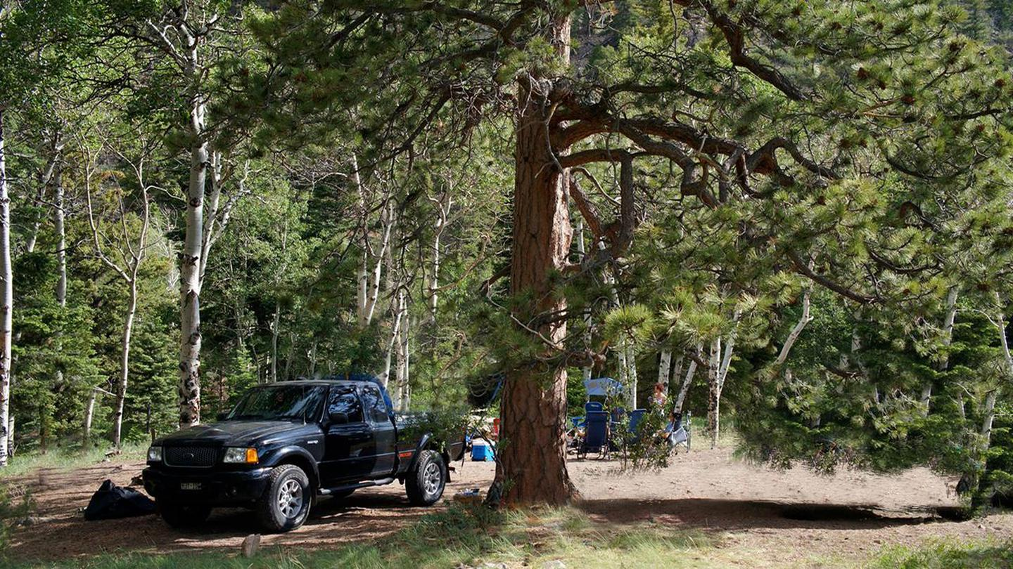 Truck pulling off into campsite along Medano Pass Primitive RoadCampsites along the road generally have tall trees for shade.
