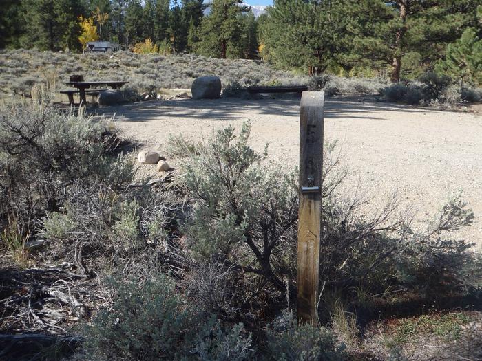 White Star Campground, site 58 marker 2