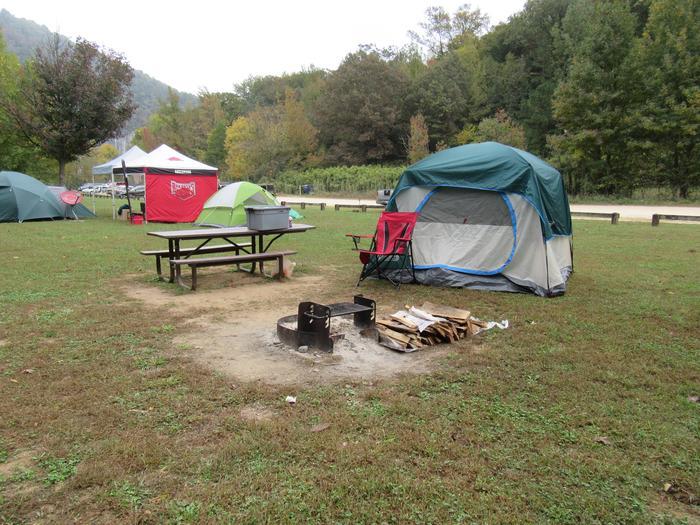 Steel Creek Site (photo 5)Steel Creek Camp Site #16