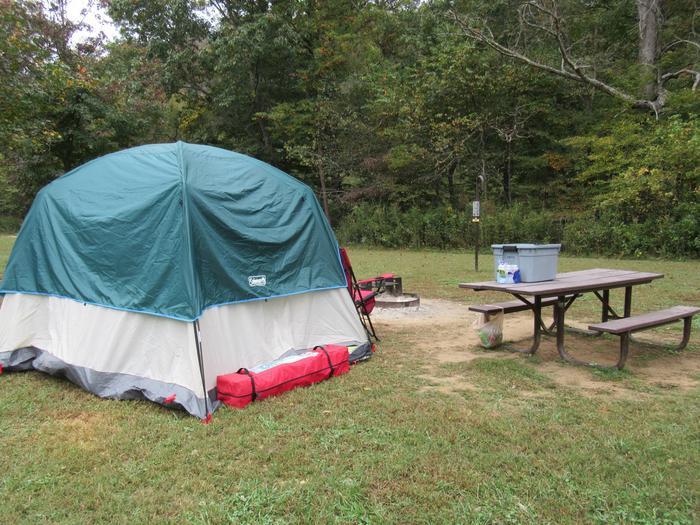 Steel Creek Camp Site #16 (photo 6)Steel Creek Camp Site #16