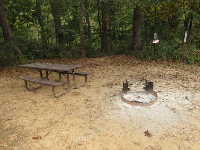 Steel Creek Camp Site #12 (photo 7)Steel Creek Camp Site #12