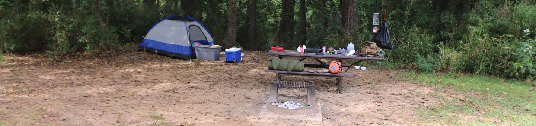 Steel Creek camp Site #12Steel Creek Camp Site #12