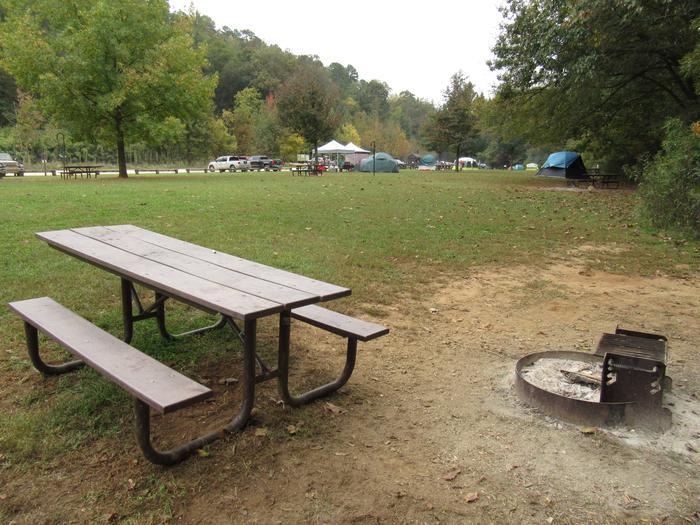Steel Creek Camp Site #10 (photo 6)Steel Creek Camp Site #10