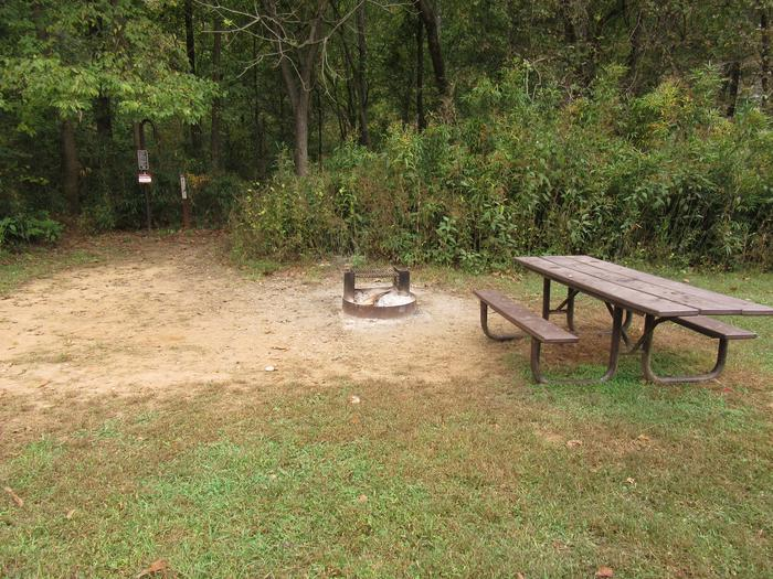Steel Creek Camp Site #10 (photo 7)Steel Creek Camp Site #10