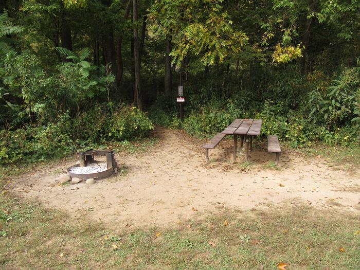 Steel Creek Camp Site #4 (photo 6)Steel Creek Camp Site #4