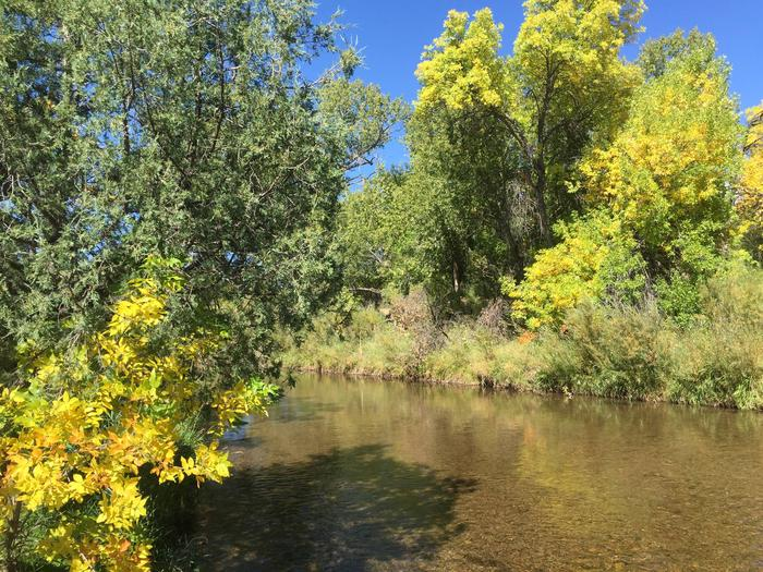 Trees near the river on Beat 2.Pecos National Historical Park - Beat 2 of the Pecos River.