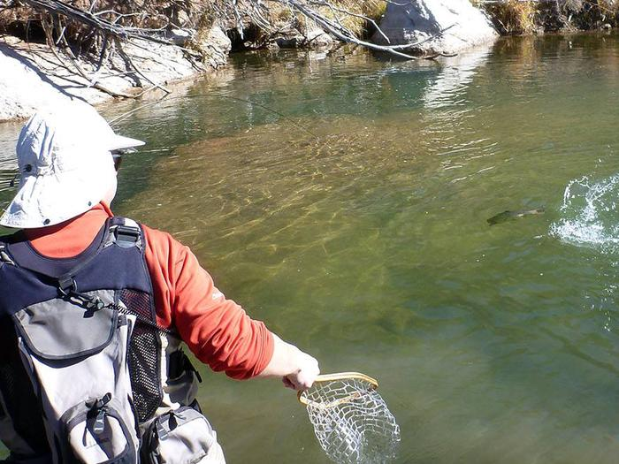 Drawing in a fish on the Pecos River.Pecos National Historical Park Fishing Reservations