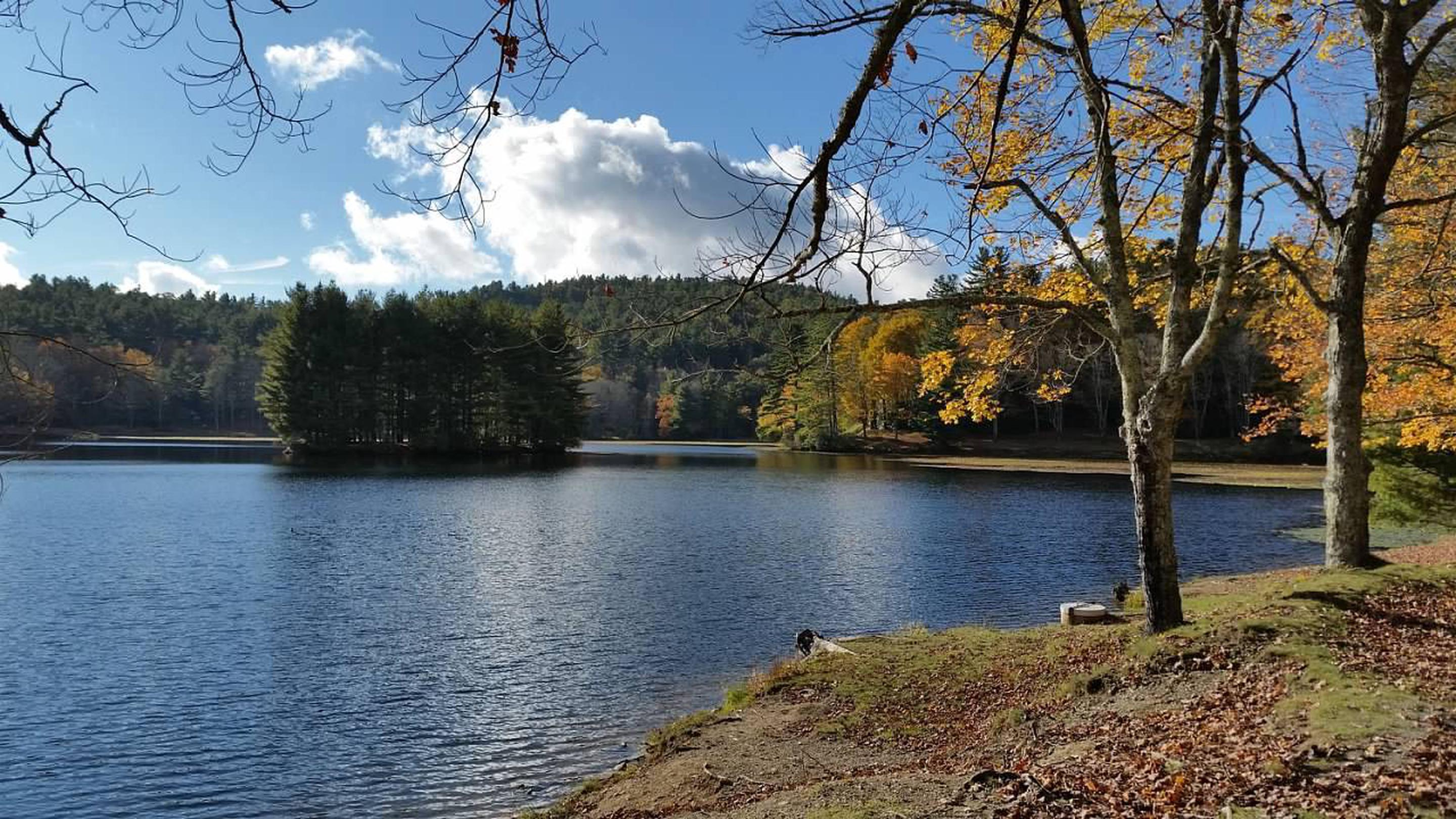 Bass Lake is another nearby attraction.Bass Lake is another popular hiking area.  It's accessible from Blowing Rock with distant views from the Moses Cone Estate on the Parkway.