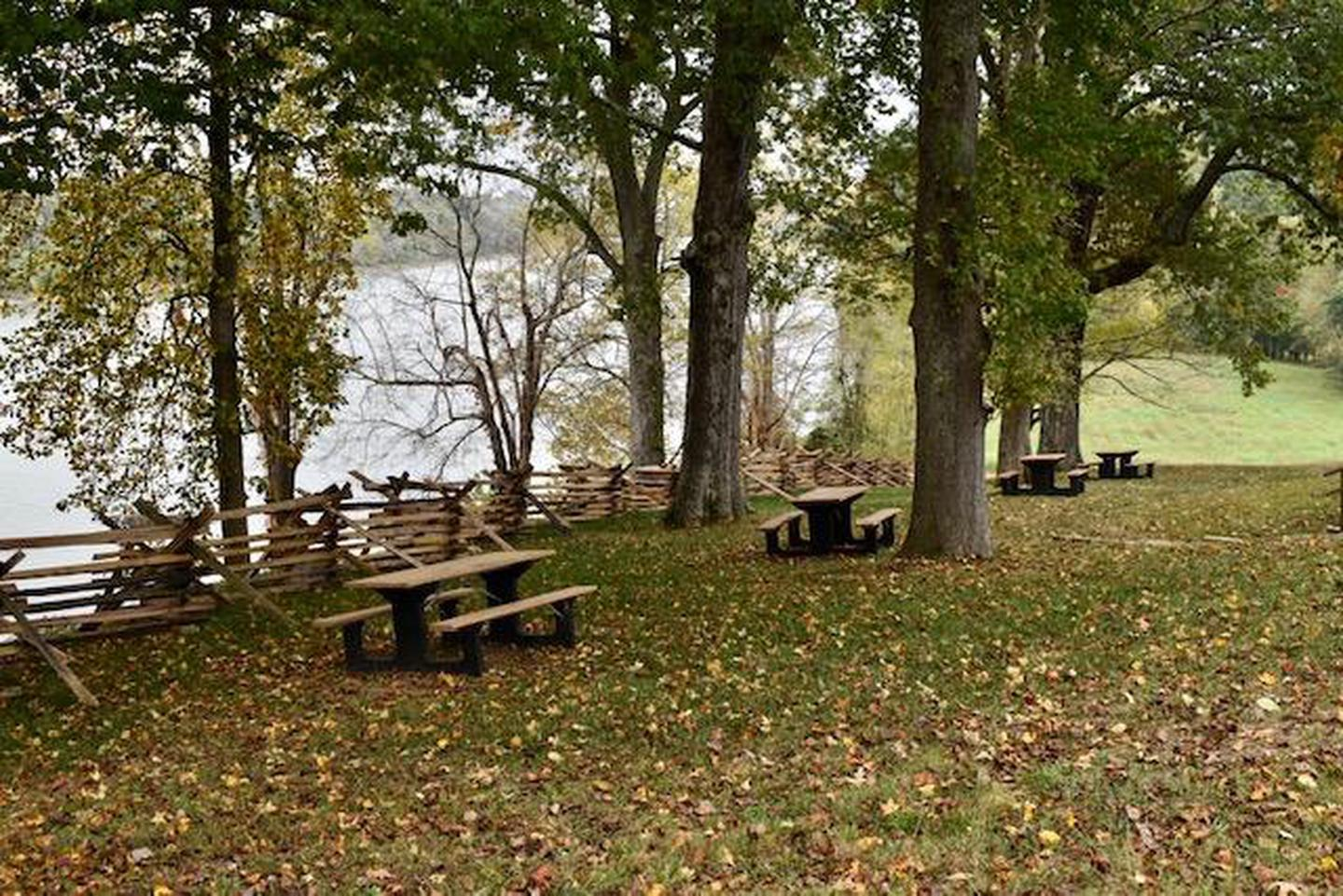 Picnic AreaEnjoy your lunch at the Picnic Area, Fort Donelson NB