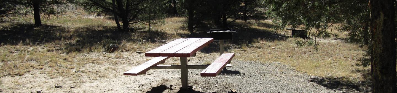 Campsite 1RV Site Picnic Table