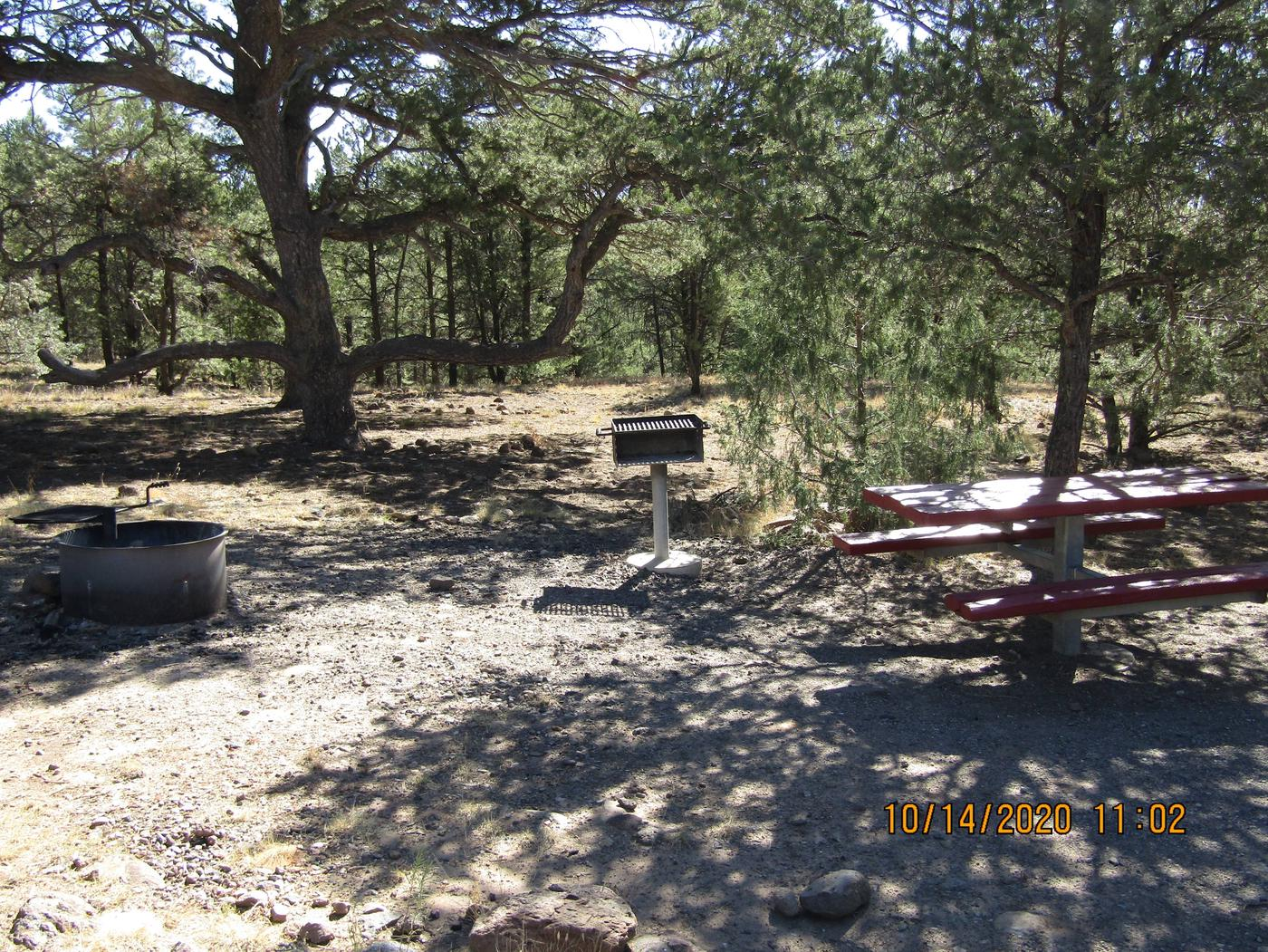 Site 7Table and Fire Pit