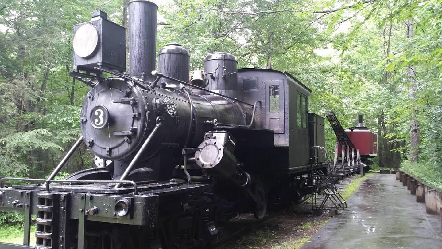 The train at Cradle of Forestry, a nearby attraction.The Cradle of Forestry, a nearby attraction which centers on the history of forestry conservation, has miles of interpretative trails, hands-on activities, and a Forestry Discovery Center.