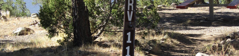 RV 11