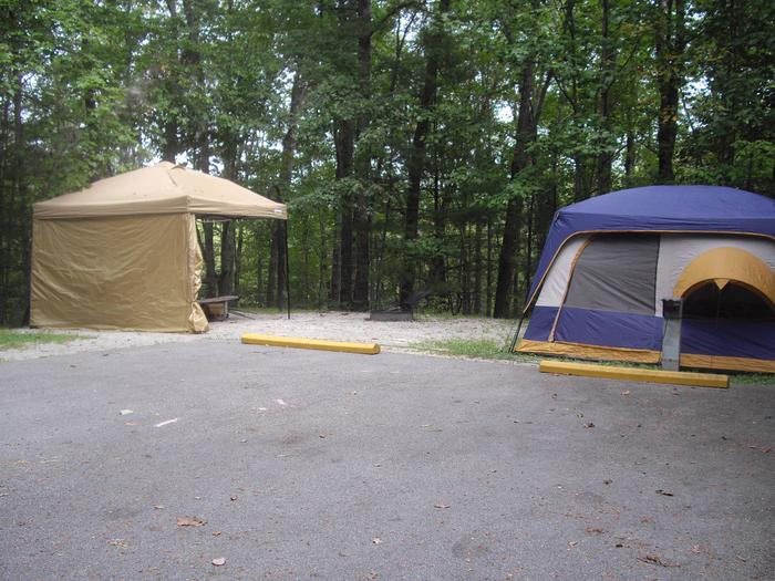 C015C015 is located on a cul-de-sac low traffic area.  Best suited for a tent or trailer that can be turned by hand otherwise awning will open over the parking area.  Short walk to bath house and playground.