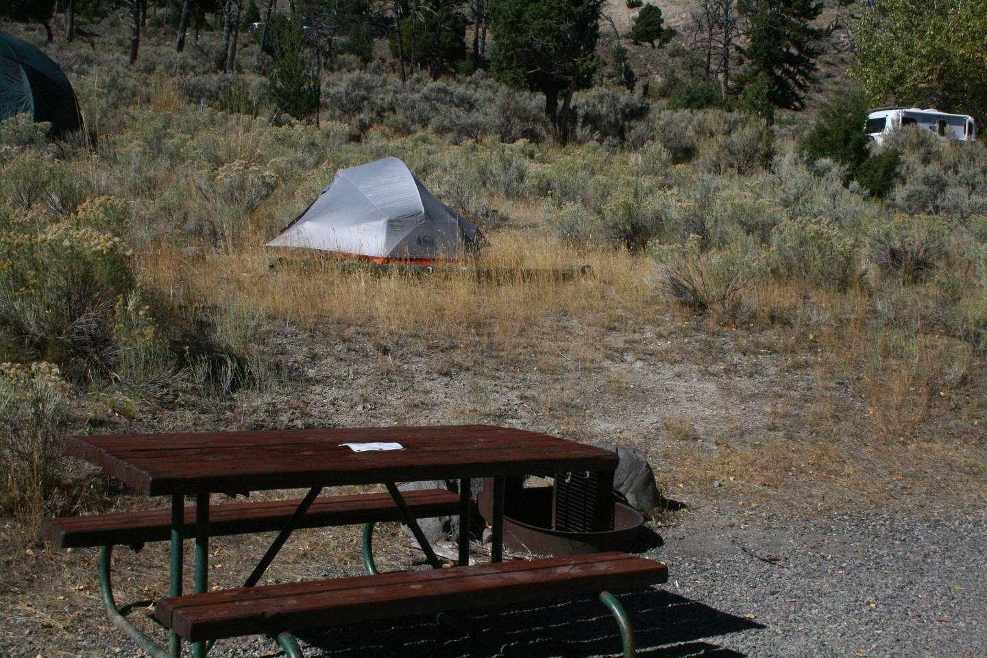 Mammoth Hot Springs Campground Site 7Mammoth Campsite #7